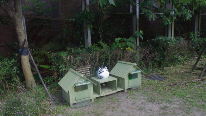 猫村・猴硐駅付近:猫のエサやり場