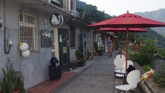 猫村のカフェ:217カフェ