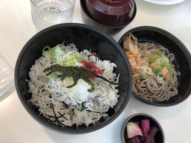 恐竜博物館のランチ・カフェ&レストラン ディノ(しらす丼)