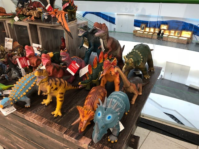 恐竜博物館・恐竜グッズのお土産