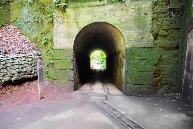 猿島島内のトンネル リゾート気分を満喫できる天然自然の無人島