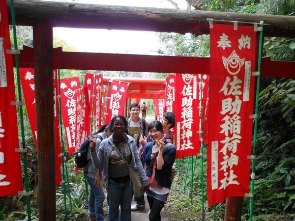 Mushroom hunt meetup in Kamakura
