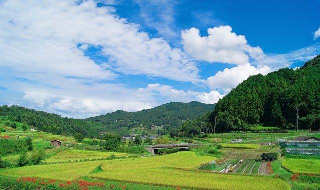 明日香村の人気観光スポット・名所