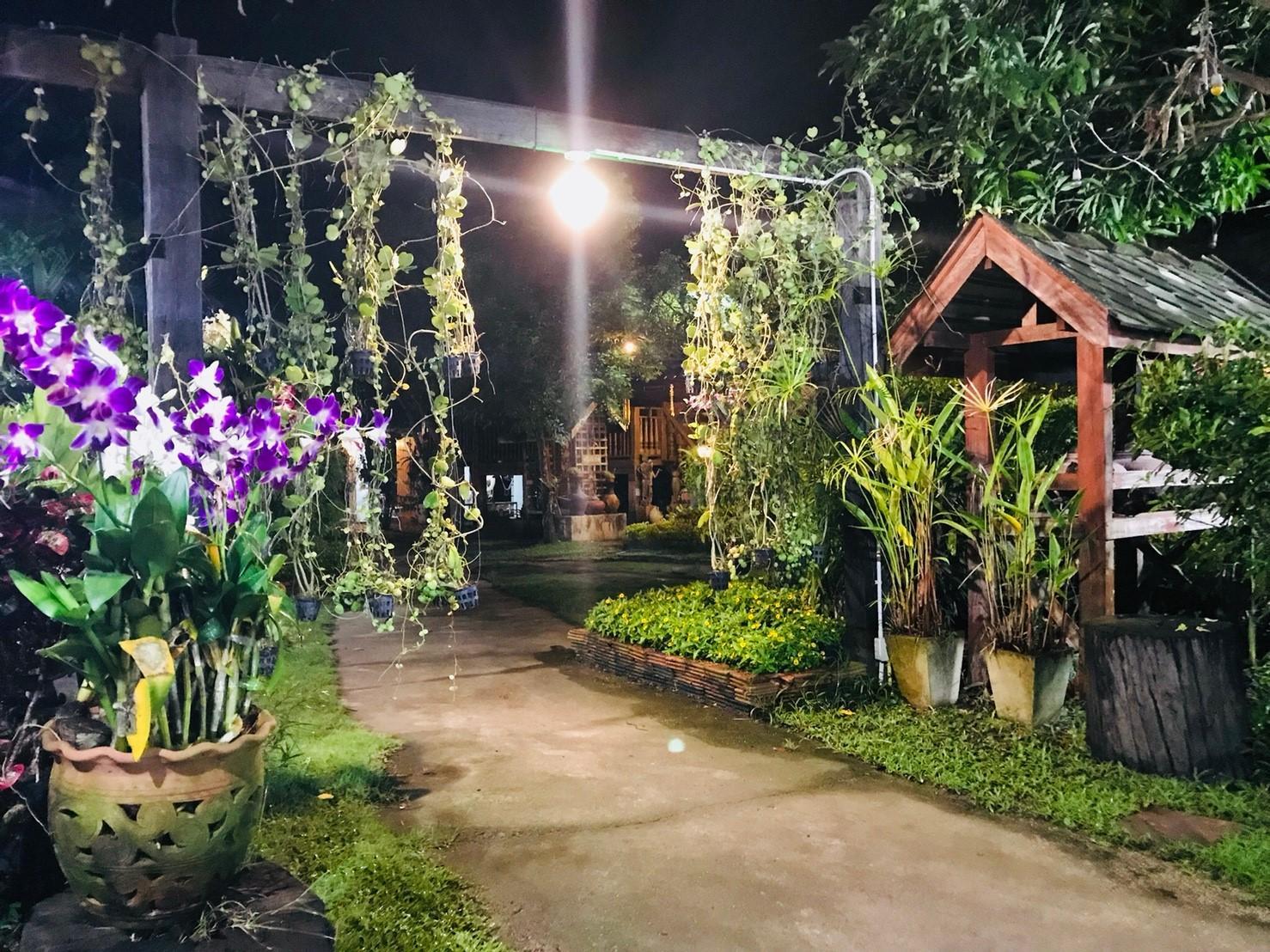 チェンマイの料理教室:夜になるとこんなに綺麗に!!!インスタ映え♡