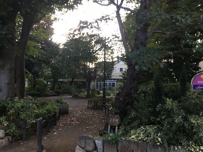 吉祥寺東緑地: 草木・花を見て散歩するのにおすすめの西荻窪駅周辺の公園