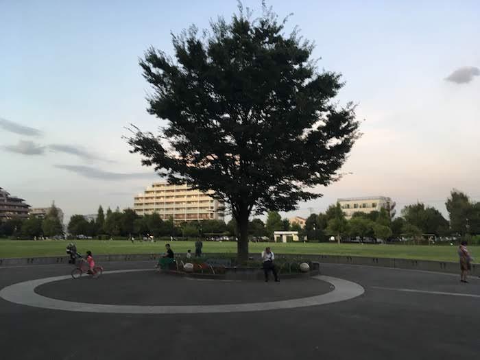 【西荻窪の公園】子供向け遊具や大人の散歩まで! 駅周辺や桃井・松庵エリアでおすすめの公園を在住者が紹介!