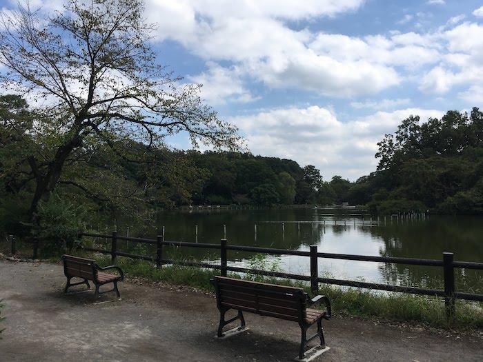 善福寺公園: 広大で長めの良い池がある公園/子供連れから散歩・デートにもおすすめ