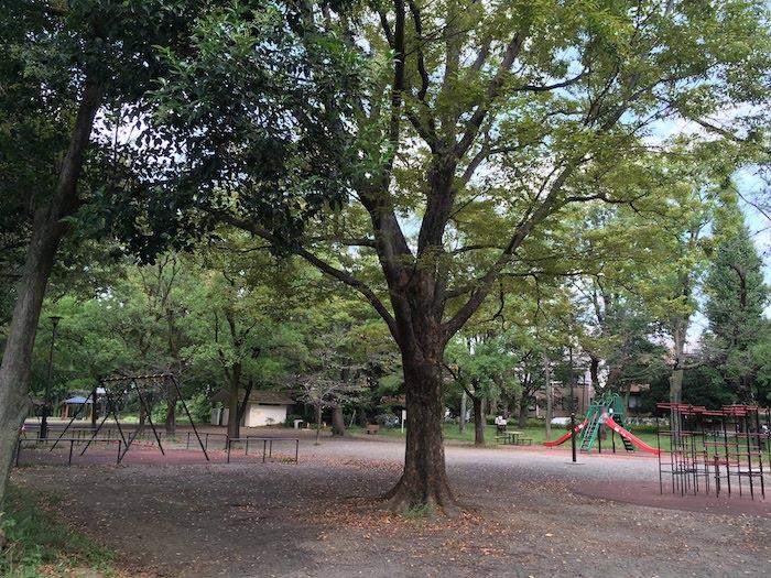 善福寺公園/遊具