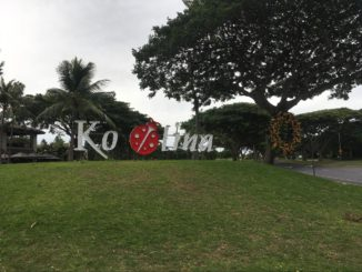 ハワイ・コオリナのおすすめ観光地スポット・アクティビティ・行き方をハワイ在住者が紹介!