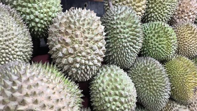 マレーシア人が愛するドリアン!旬の時期・種類・お土産などの現地事情を解説